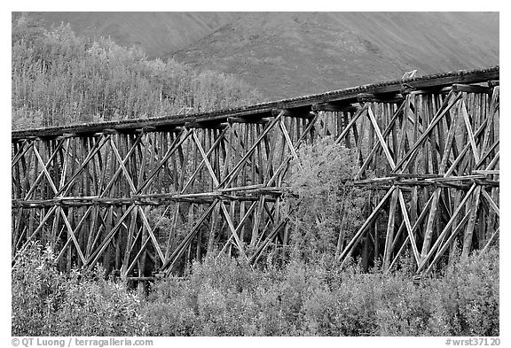 Section of Gilahina trestle constructed in 1911. Wrangell-St Elias National Park (black and white)