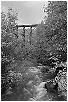 Gilahina River and trestle. Wrangell-St Elias National Park ( black and white)
