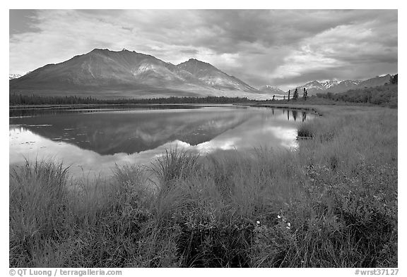 Grasses, lake, and mountains. Wrangell-St Elias National Park (black and white)