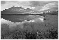 Grasses, lake, and mountains. Wrangell-St Elias National Park, Alaska, USA. (black and white)