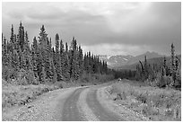 McCarthy road with vehicle approaching in the distance. Wrangell-St Elias National Park, Alaska, USA. (black and white)
