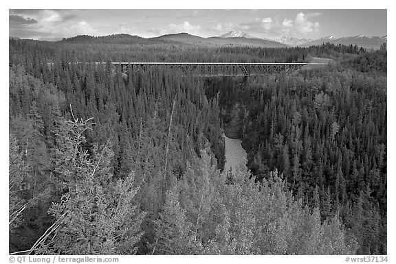 Kuskulana canyon and bridge. Wrangell-St Elias National Park (black and white)