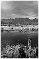 Pond, tundra and mountains. Wrangell-St Elias National Park, Alaska, USA. (black and white)