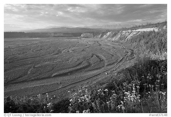 River plain of the Kotsina. Wrangell-St Elias National Park (black and white)