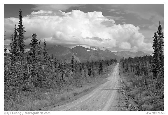 Nabesna Road, mid-afternoon. Wrangell-St Elias National Park (black and white)