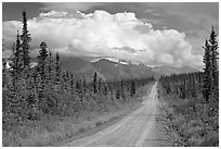 Nabesna Road, mid-afternoon. Wrangell-St Elias National Park, Alaska, USA. (black and white)