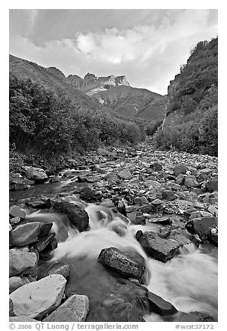 Stream, Skokum Volcano. Wrangell-St Elias National Park (black and white)