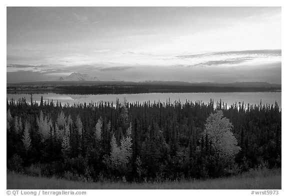 Mt Wrangell and Willow Lake, morning. Wrangell-St Elias National Park (black and white)