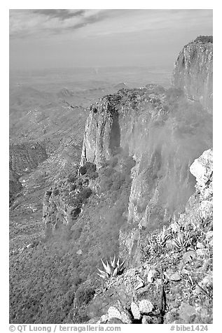 Cliffs and fog from South Rim, morning. Big Bend National Park (black and white)