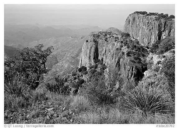 Cliffs and desert from top of South Rim. Big Bend National Park (black and white)