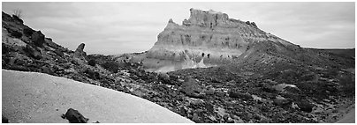 Landscape of white volcanic ash and rocks. Big Bend National Park (Panoramic black and white)