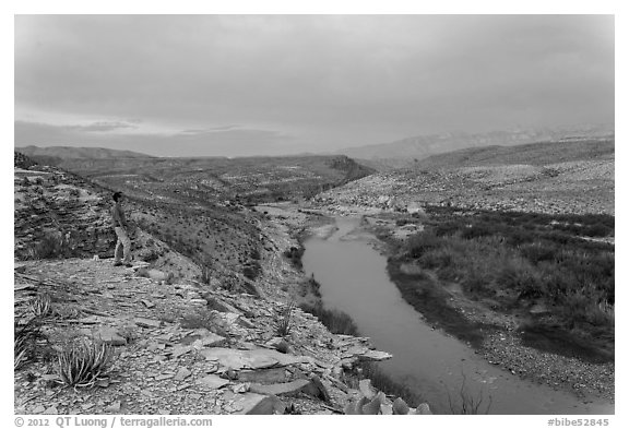 Park visitor looking, Rio Grande River. Big Bend National Park (black and white)