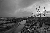 Ocotillo and Rio Grande Wild and Scenic River. Big Bend National Park ( black and white)