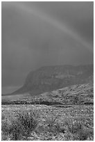 Rainbow over desert and Chisos Mountains. Big Bend National Park, Texas, USA. (black and white)