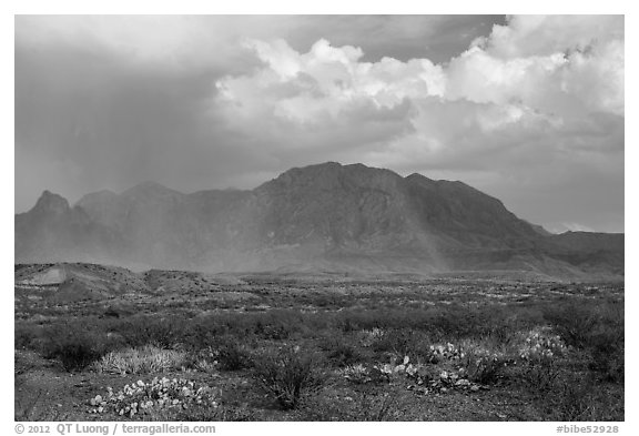 Clearing storm, rainbow, and Chisos Mountains. Big Bend National Park (black and white)