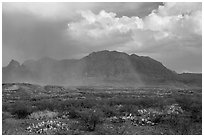 Clearing storm, rainbow, and Chisos Mountains. Big Bend National Park, Texas, USA. (black and white)