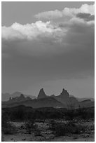 Mules Ears. Big Bend National Park ( black and white)