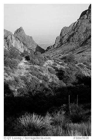 The Window, a V-opening through Chisos Basin. Big Bend National Park (black and white)
