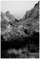 The Window, a V-opening through Chisos Basin. Big Bend National Park ( black and white)