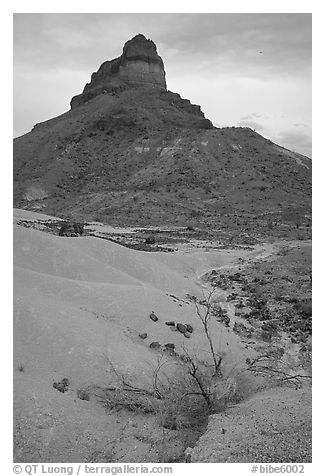 Volcanic tower near Tuff Canyon. Big Bend National Park (black and white)