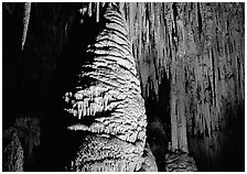 Large stalagmite column and thin stalagtites. Carlsbad Caverns National Park ( black and white)