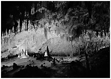 Papoose Room. Carlsbad Caverns National Park, New Mexico, USA. (black and white)