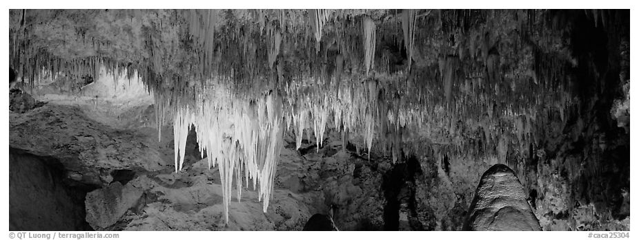 Cave roof with stalactites in Big Room. Carlsbad Caverns National Park (black and white)