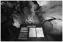 Interpretive sign, Iceberg Rock. Carlsbad Caverns National Park ( black and white)