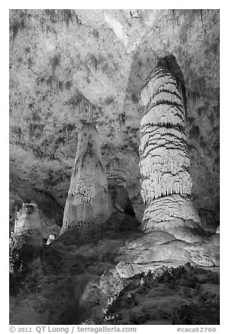 Giant Dome and Twin Domes. Carlsbad Caverns National Park (black and white)