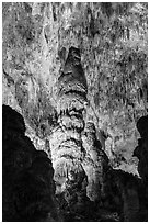 Massive stalagmites and delicate stalagtites, Big Room. Carlsbad Caverns National Park, New Mexico, USA. (black and white)