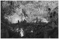 Fairyland, Big Room. Carlsbad Caverns National Park, New Mexico, USA. (black and white)