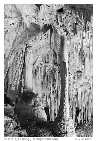 Delicate stalagtites with iron oxide staining in Painted Grotto. Carlsbad Caverns National Park (black and white)