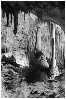 Calcite speleotherms and soda straws, Painted Grotto. Carlsbad Caverns National Park, New Mexico, USA. (black and white)