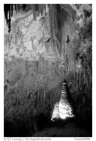 Delicate stalactites in Papoose Room. Carlsbad Caverns National Park (black and white)