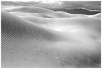 Mesquite Sand Dunes, morning. Death Valley National Park, California, USA. (black and white)