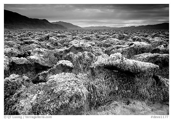Salt formations, Devil's golf course. Death Valley National Park (black and white)