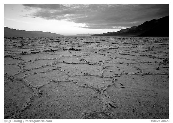 Hexagonal salt tiles near Badwater, sunrise. Death Valley National Park (black and white)