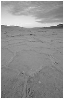Hexagonal stress tiles on saltpan near Badwater, sunrise. Death Valley National Park, California, USA. (black and white)