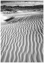 Ripples on Mesquite Sand Dunes. Death Valley National Park, California, USA. (black and white)