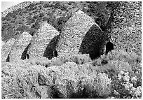 Charcoal Kilns near Wildrose. Death Valley National Park ( black and white)
