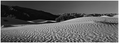 Desert landscape with sand ripples, Mesquite dunes. Death Valley National Park (Panoramic black and white)