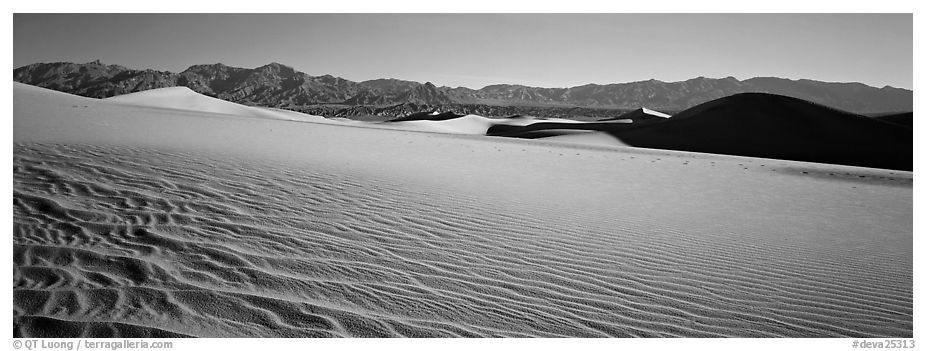 Landscape of sand dunes and mountains. Death Valley National Park (black and white)