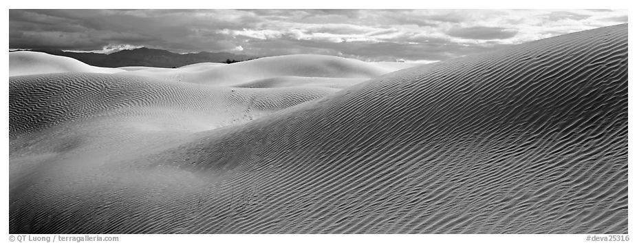 Desert sand dune landscape. Death Valley National Park (black and white)
