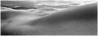 Desert sand dune landscape. Death Valley National Park (Panoramic black and white)