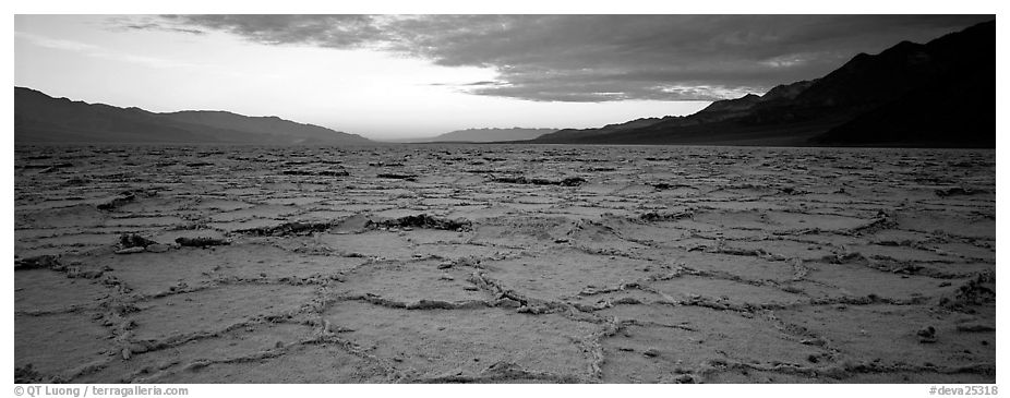 Hexagons on salt pan at sunrise. Death Valley National Park (black and white)