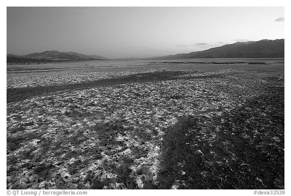 Salt formations on Valley floor, dusk. Death Valley National Park (black and white)