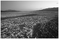 Salt formations on Valley floor, dusk. Death Valley National Park ( black and white)