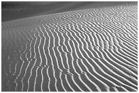 Sand ripples close-up, sunrise. Death Valley National Park, California, USA. (black and white)