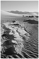 Cracked mud and sand ripples, Mesquite Sand Dunes, early morning. Death Valley National Park, California, USA. (black and white)
