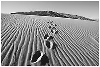 Footprints in the sand leading towards mountain. Death Valley National Park, California, USA. (black and white)